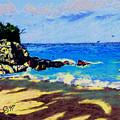 Island Coast by Stan Hamilton