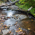 Jacob's Creek Rapids by Russell Johnson