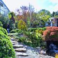 Japanese Garden 3 by Jeelan Clark