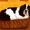 Jd In The Cat Bed by Sue Martin