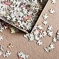 Jigsaw Puzzle by Tom Gowanlock