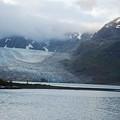 John Hopkins Glacier by Michael Peychich