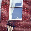 Jonesborough Tennessee - Window Over The Shop by Frank Romeo