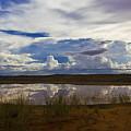 Kalahari Rain Dance by Basie Van Zyl
