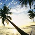 Kauai, Waimea by Peter French - Printscapes