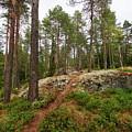 Kaukaloistenkallio Hillside View by Jouko Lehto