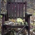 Keven's Chair by Pat Purdy