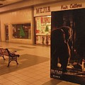 King Kong Remake Poster Mall Casa Grande Arizona Christmas 2005 by David Lee Guss