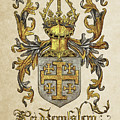 Kingdom Of Jerusalem Coat Of Arms - Livro Do Armeiro-mor by Serge Averbukh