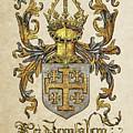 Kingdom Of Jerusalem Coat Of Arms - Livro Do Armeiro-mor by Serge Averbukh