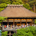 Kiyomizudera Temple by Sebastian Musial