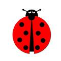 Ladybug by Henrik Lehnerer