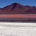 Laguna Colorada And Mountains by Aivar Mikko