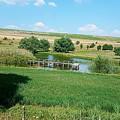 Lake  by Mihai Bardan