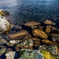 Lake Ogwen by Adrian Evans
