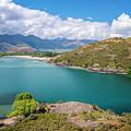 Lake Wanaka New Zealand IIi by Joan Carroll