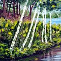 Lakeside Birches by Anne Trotter Hodge