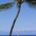 Lanai, Manele Bay by Greg Vaughn - Printscapes