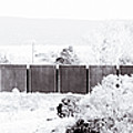 Landscape Galisteo Nm J10i by Otri Park