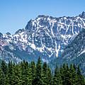 Landscape Nature Scenes Around Columbia River Washington State A by Alex Grichenko