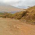 Landscape Near Marsabit, Kenya by Marek Poplawski