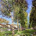 Lane Of Poplars At Moret by MotionAge Designs