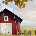 Large Red Barn With Bicycle In Field Of Wheat by Sandra Cunningham