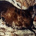 Lascaux: Horse by Granger