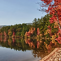 Late Afternoon On Lake Chocorua by Jeff Folger