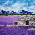 Lavender Farm by Mike Kraus