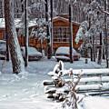 Let It Snow by Steve Harrington