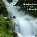 Like The Flowing Babbling Brook... by DeeLon Merritt