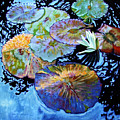 Lily Pad Palettes by John Lautermilch