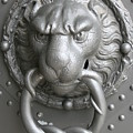 Lion And Snake by Christiane Schulze Art And Photography