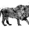 Lion by Rosalia S