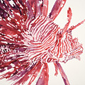 Lionfish by Tanya L Haynes - Printscapes