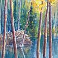 Little Mountain Beaver Pond 04 by Sukey Watson