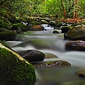 Little Pigeon River by Dennis Nelson