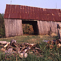 Lloyd Shanks Barn 4 by Curtis J Neeley Jr