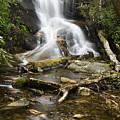Log Hollow Falls North Carolina by Chip Laughton