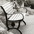 Lone Bench In The Park. by Yurix Sardinelly