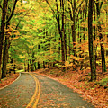 Lost In Pennsylvania - Paint by Steve Harrington