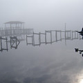 Lost In The Fog by Nicole I Hamilton