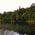 Lough Gill Co Sligo Ireland by Louise Macarthur Art and Photography