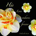 Love Endures Forever by Debbie Nobile