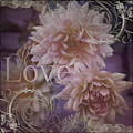 Love by Nancy Forehand
