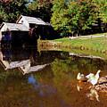 Mabry Mill  by Thomas R Fletcher