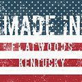 Made In Flatwoods, Kentucky by Tinto Designs