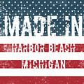 Made In Harbor Beach, Michigan by GoSeeOnline