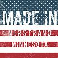 Made In Nerstrand, Minnesota by GoSeeOnline